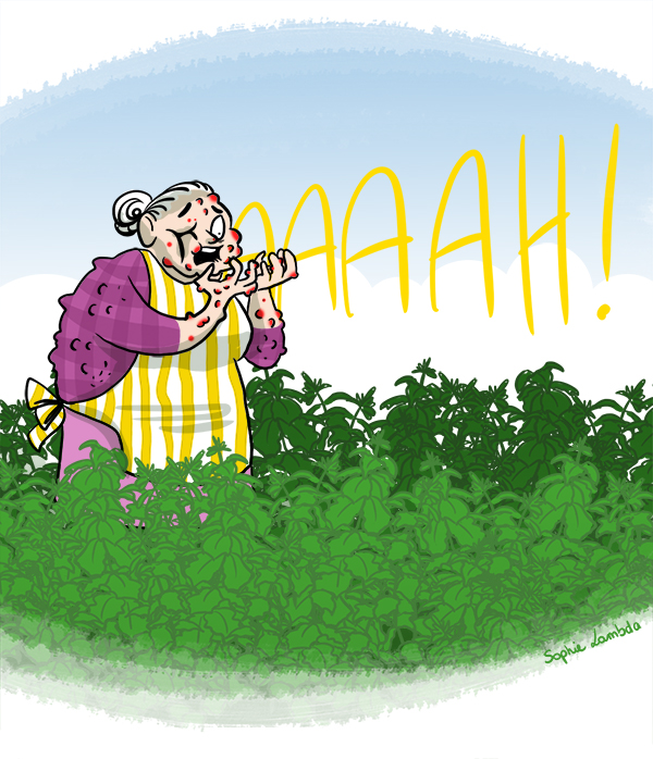 pousser-mémé-dans-les-orties